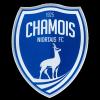 Logo Club Niort